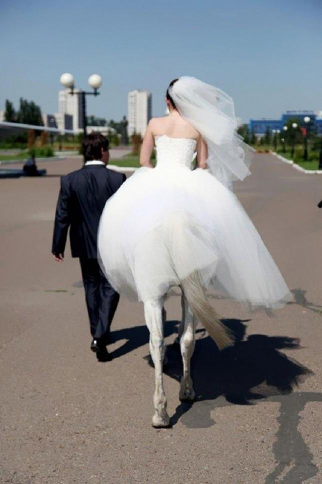 horse-woman-645x968