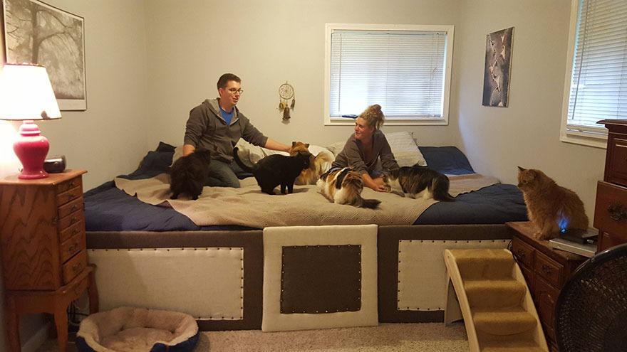 super-cama-pareja-perros-gatos-3